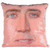 Nicolas Cage Sequence Pillow case