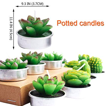 cactus tea light candles