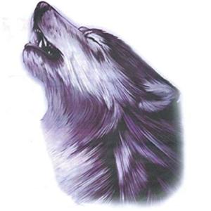 fake wolf tattoo