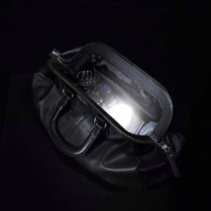 motion sensor purse light