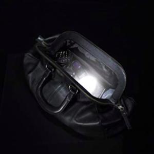 motion sensor purse light