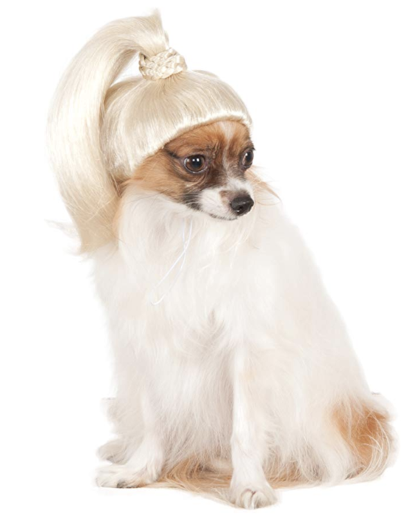 wigs for dogs